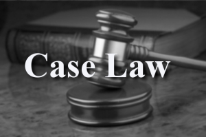 Case Law Precedents